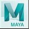 Maya LT 2020 na 1 rok